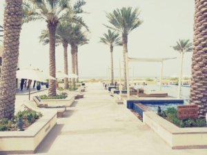 Pools and Beach: Park Hyatt Hotel